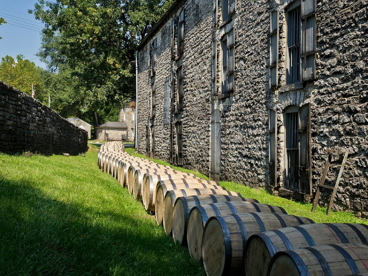 Many whiskey barrels outside on the grass