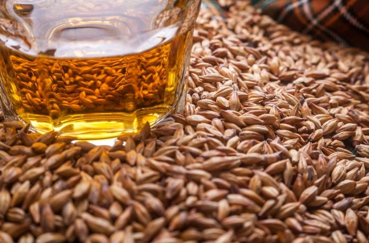 Is Whiskey / Whisky Gluten Free? - Find Out (+ We Ask the